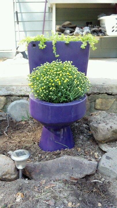 Toilet Planter - Bing Images