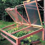 Learn how to make your own cold frame with these free projects & tutorials. A great technique for extending your growing season. | The Micro Gardener