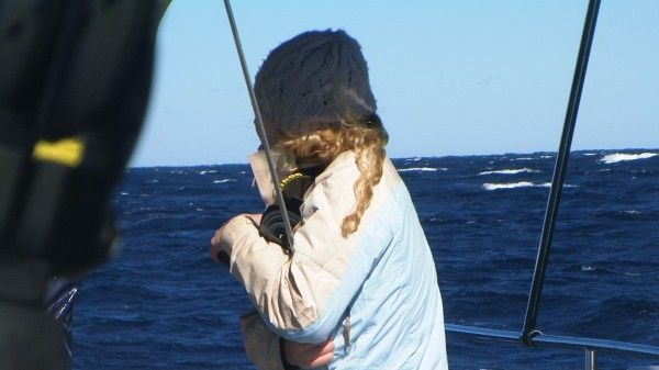 18.07.2014 Imagine Whale Watch