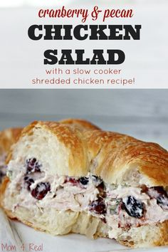 Chicken pecan salad sandwich recipe