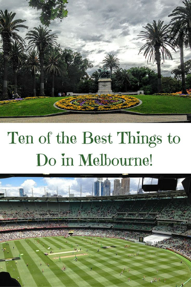 Click here to find out the rules for cricket, the tastiest pastries, and the cutest beach penguins in Melbourne, Australia!