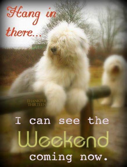 Image result for wonderful weekend images