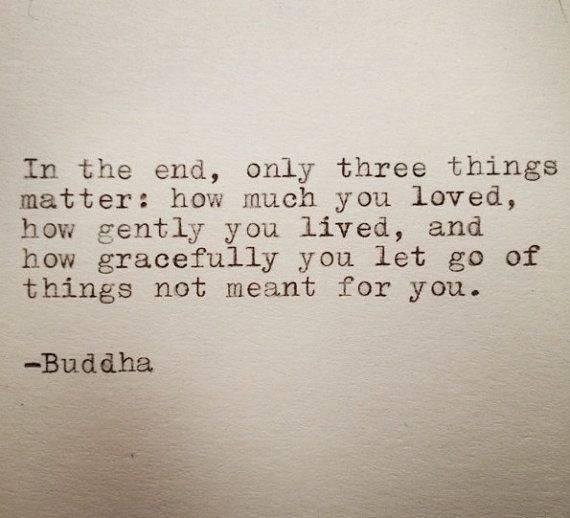 'In the end, only 3 things matter: how much you loved, how gently you lived and how gracefully you let go of things not meant for you'  -Buddha