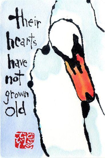 Swan Heart; dosankodebbie