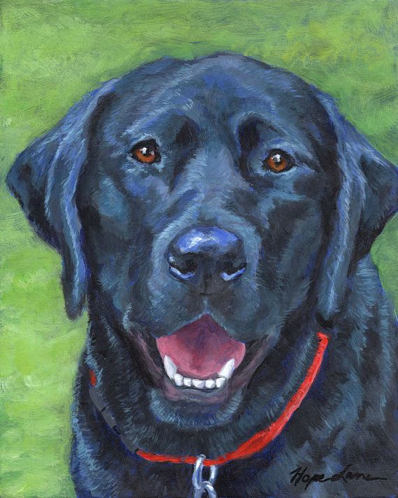 Black Lab Custom Pet Portrait Painting, a similar custom portrait is offered on Etsy by HopeLaneArt, $185.00