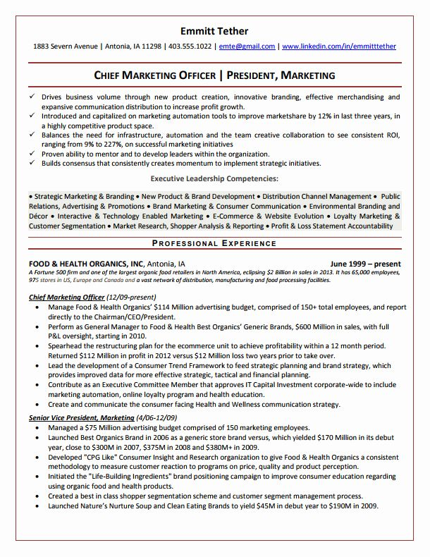 20 Chief Information Officer Resume In 2020 Executive Resume Professional Resume Samples Resume