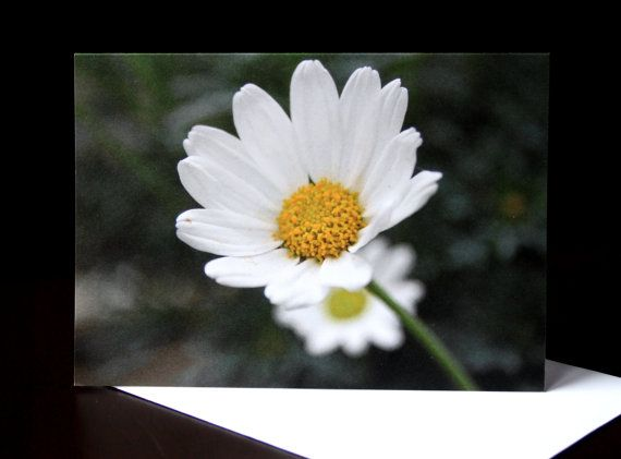 Daisy Photo Card  Blank 4x6 by PforPoppy on Etsy, €2.75