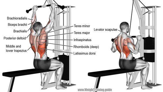 Medium-grip lat pull-down exercise