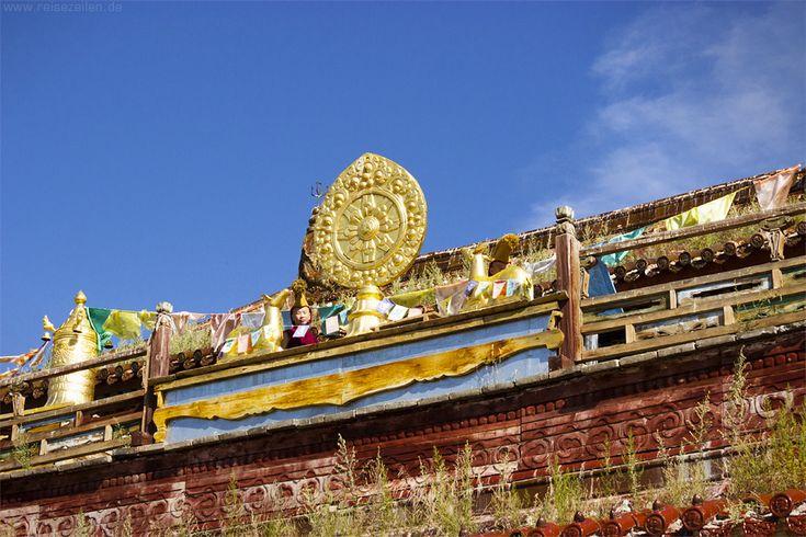 Zwei junge Mönche oben auf dem Dach blasen gleichzeitig das Muschelhorn, so dass der Ton beim Atemholen eines der beiden Spieler nicht unterbrochen wird. Im Buddhismus steht es für den Klang, der Buddhas Lehre in die Welt hinausträgt. Kloster Amarbayasgalant im Norden der #Mongolei