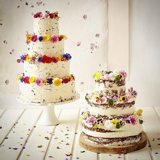 Best 25 Wedding cake edible flowers ideas on Pinterest Edible