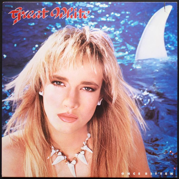 Great White Once Bitten 4 56 I M Not Sure I Could Put