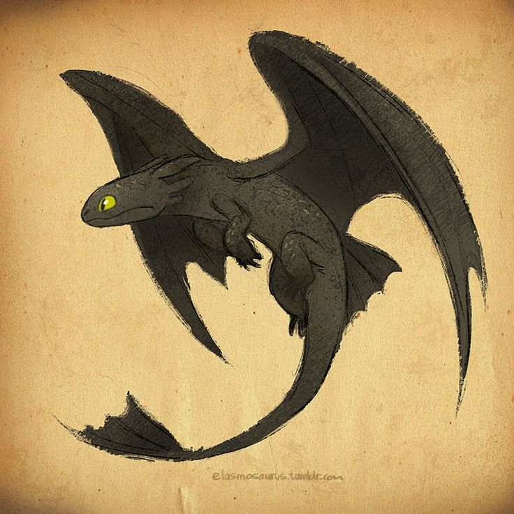 elasmosaurus: An old Toothless sketch that I finally colored.