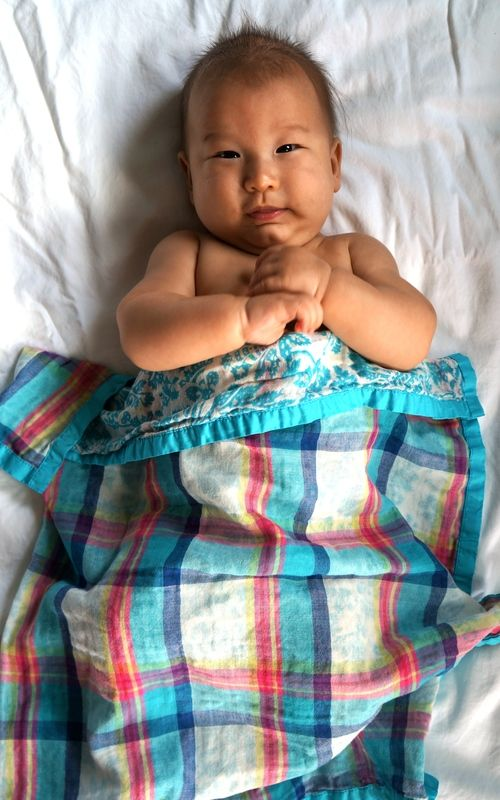 plaid swaddle blanket.: Swaddle Blankets, Security Blankets, Cute Pictures