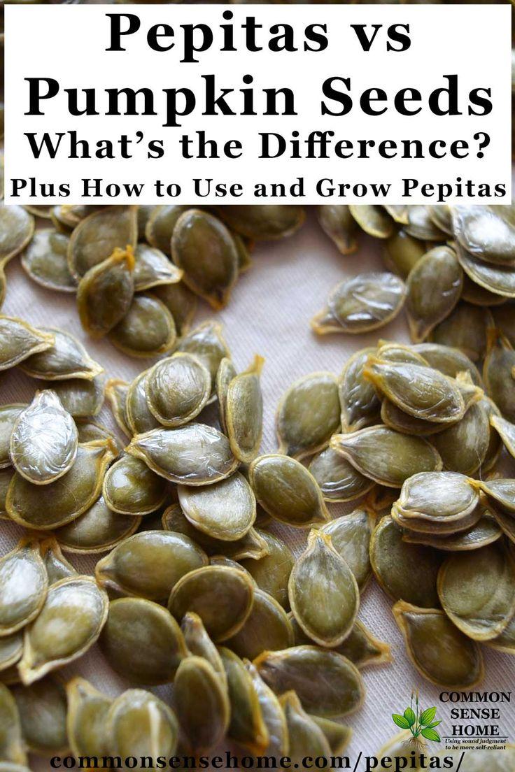 Pepitas vs Pumpkin Seeds - Plus How to Use and Grow Pepitas