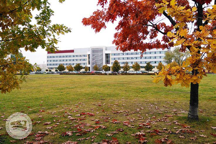 #jesień #budynek37 #WOBiAK #SGGW #autumn #building37 #WULS