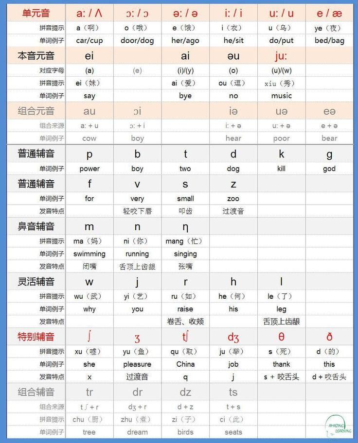 Chinese pinyin-articulation diagram