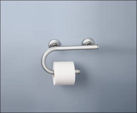 Grab Bar And Toilet Paper Holder