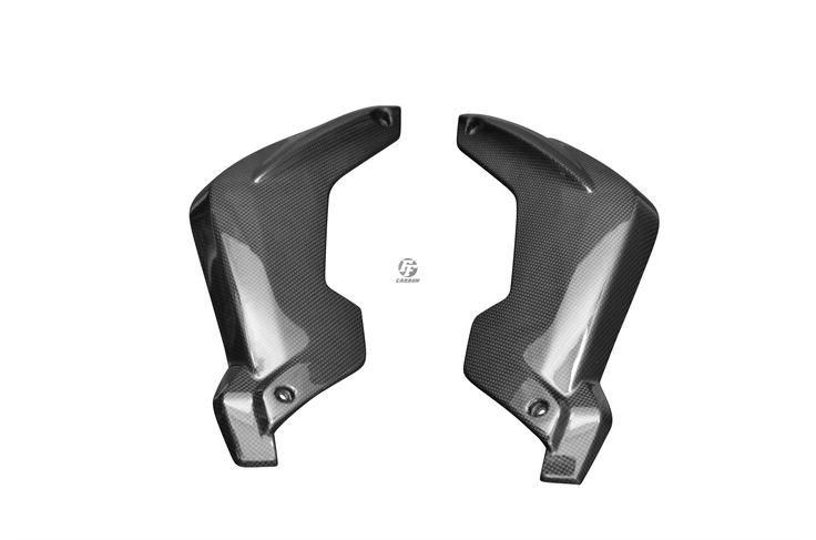 Carbon Gabelverkleidung für BMW K1300R Carbon+Fiberglas | Leinwand | Glossy