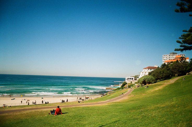 ボンダイの海はサーフィンにもってこいですが、海岸沿いに広がる芝生に寝っ転がってのんびり過ごすのも気持ちのいいものです。