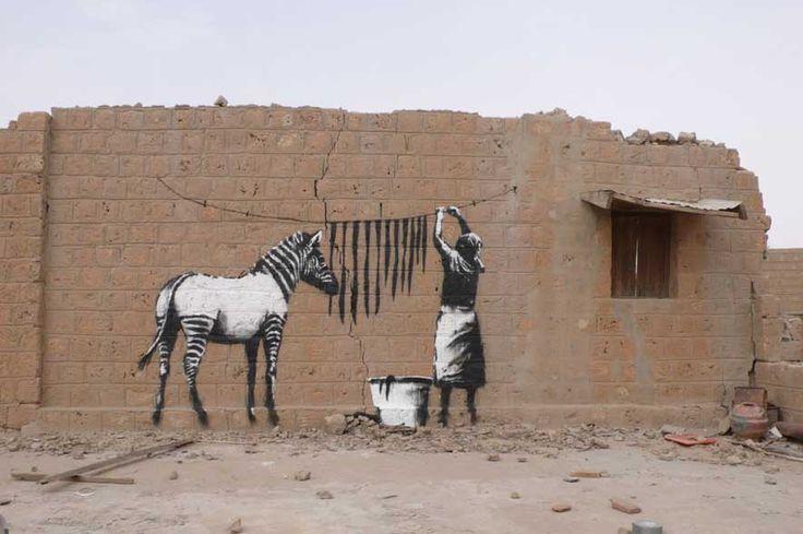 Zebra, woman, washing-line