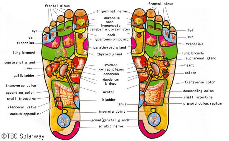 refleksologi kaki al ansar health