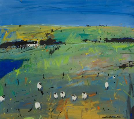 Hamish MacDonald Questioning Sheep, Barra