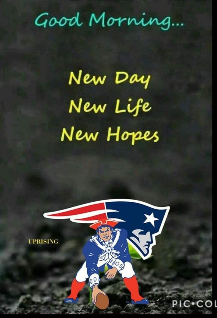 Pin By Matthew Brown On The Boys Patriots Memes New England Patriots Patriots