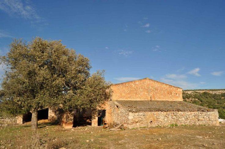 Fincas Rusticas en Venta en MANACOR, MALLORCA, Spain
