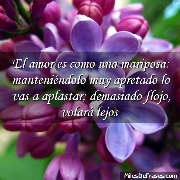 El amor es como una mariposa: manteniéndolo muy apretado lo vas a aplastar; demasiado flojo volará lejos