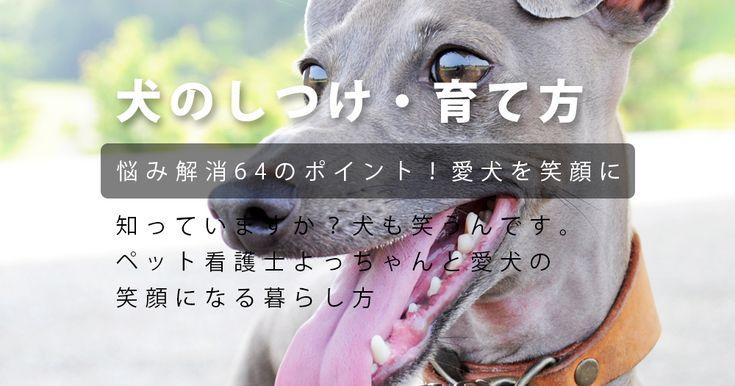 犬のしつけ・犬の育て方 ペット看護士よっちゃんと愛犬の「笑顔になる暮らし方」悩み解消64のポイント!