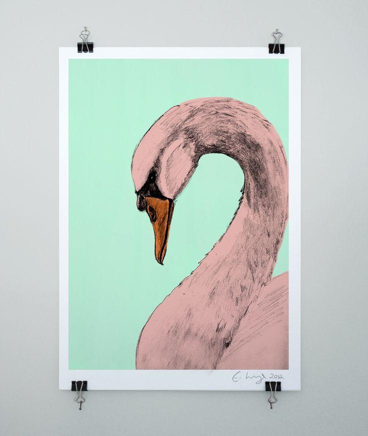 The Swan 2