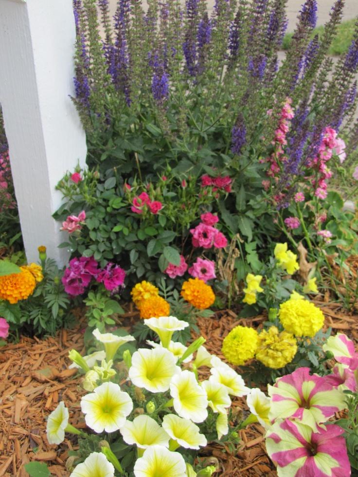 Garden Ideas 2012 22 best teresa garden ideas images on pinterest   gardening