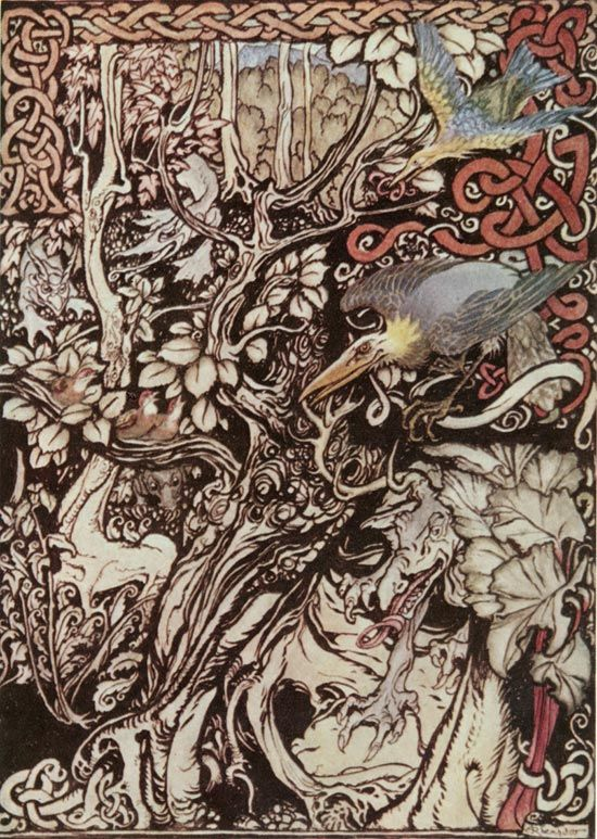 Irish Fairy Tales, The Story of Tuan Mac Cairill: Wild and Shy and Monstrous Creatures, by Arthur Rackham