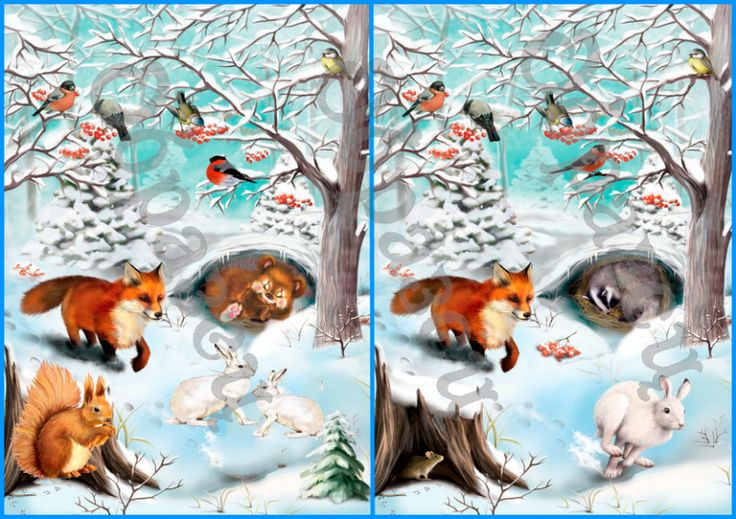 Животные зимой картинки для детского сада