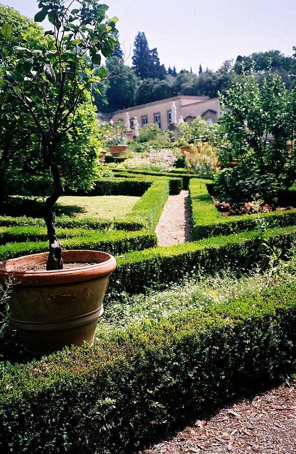 13 best vila castello medici florence images on pinterest for Casa classica villa medici