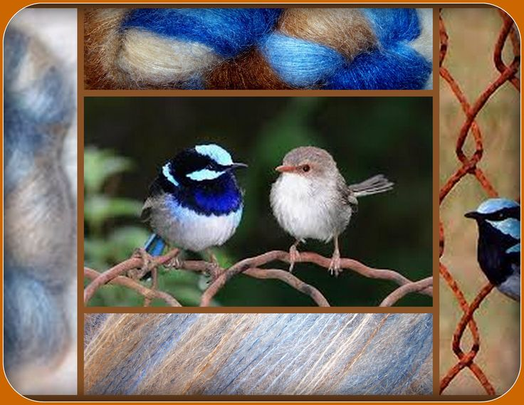 Light and dark blues & browns are all seen in these gorgeous little birds that hop around my farm. Blue Wren is the name of this colourway of course. With acknowledgements to Ozplasmic for the rusty wire image. Yarn featured is KiSSS mohair with silk