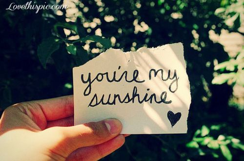 You're my sunshine love quotes cute photography heart quote positive quotes love quotes