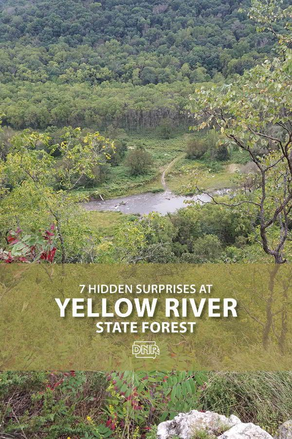 Take In The Fantastic Views From Yellow River State Forest S