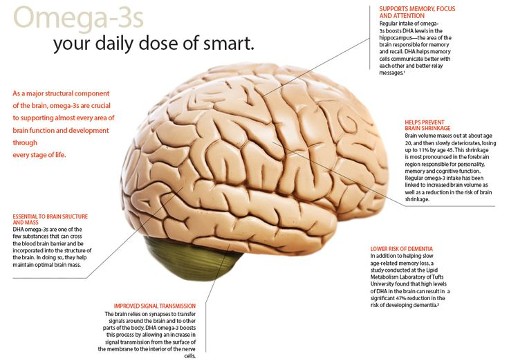Foods to improve memory for studying image 5