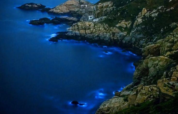 Красивейшие заливы мира / Туристический спутник