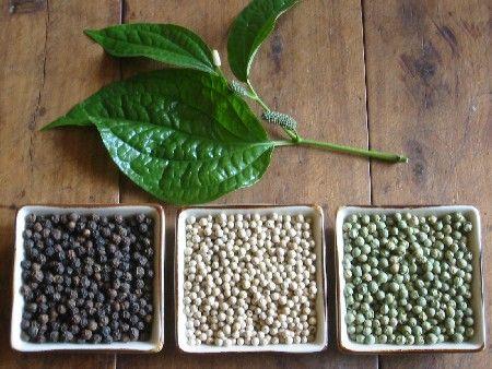 Risultati immagini per pepe bianco, nero verde