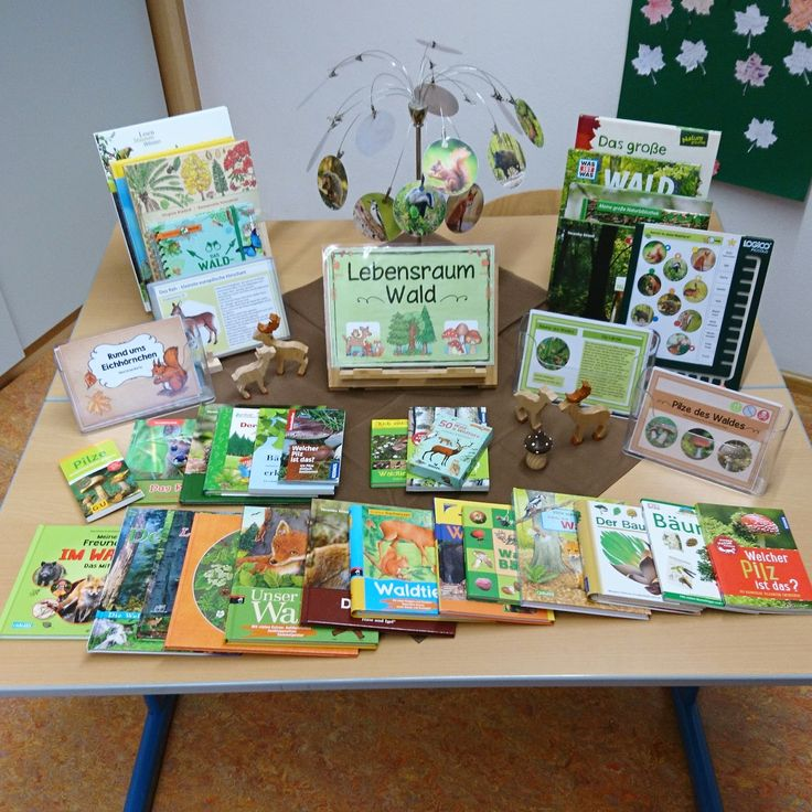 """Themed to the forest Since we create a lapbook on the subject of """"forest"""", I have set up a theme table in the classroom for the children. …"""