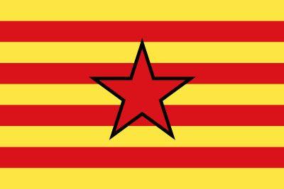 Bandera de La estrelada aragonesa #bandera #estrelada #aragon