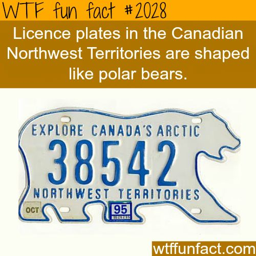 Licence plates in Northwest Territories Canada - Just another reason to move to Canada ;)