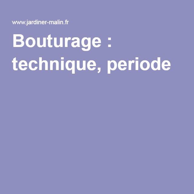 Bouturage : technique, periode