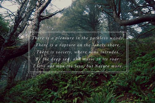 There is a pleasure in the pathless woods The Bridges