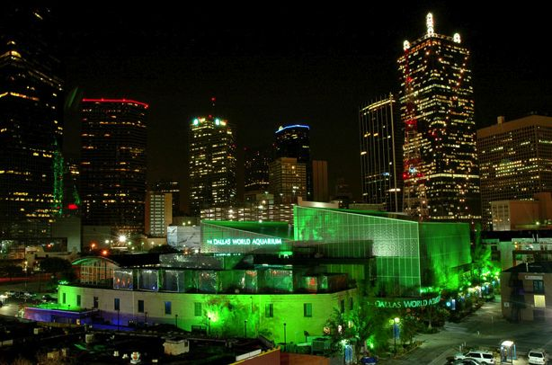 Best 25 Dallas World Aquarium Ideas On Pinterest
