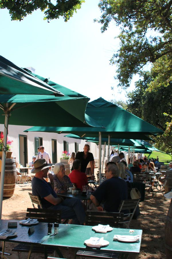 Dining at Jonkershuis Restaurant at Groot Constantia Wine Estate With The Family Cape Town, South Africa