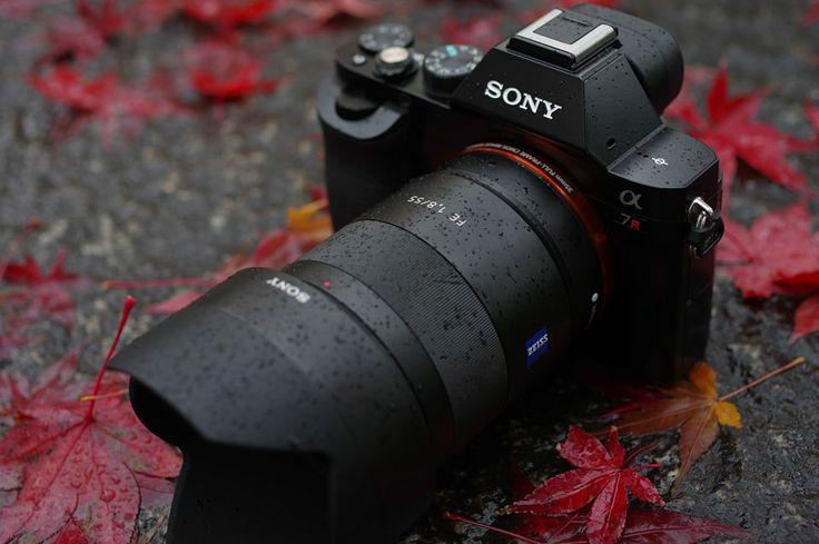 [PY] フォトヨドバシ SONY SEL55F18Z 55mm F1.8 インプレッション | photo.yodobashi.com |