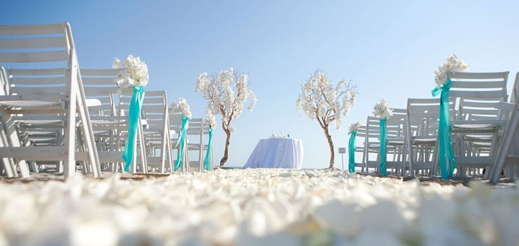 .: Ideas, Colors, Tiffany Blue, Trees, Beach Weddings, Wedding Blog, Manzanita Tree, Wedding Ceremony, Beautiful Beaches Wedding